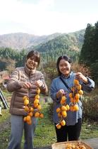 吊るし柿作り体験