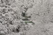 奥山渓谷の雪景色