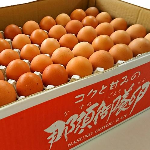 那須の御用卵!45個