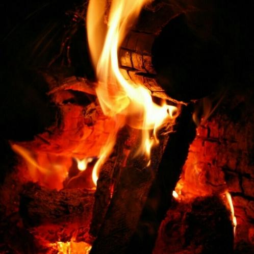 手ぶらで焚き火をもっと楽しもう!