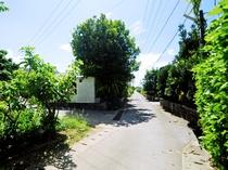 【周辺】宿の周辺にはのどかな集落風景が広がります
