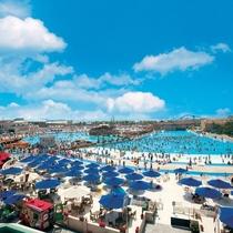 ラグーナのプール:ジョイアマーレの浜辺