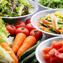 まるかじり野菜一例