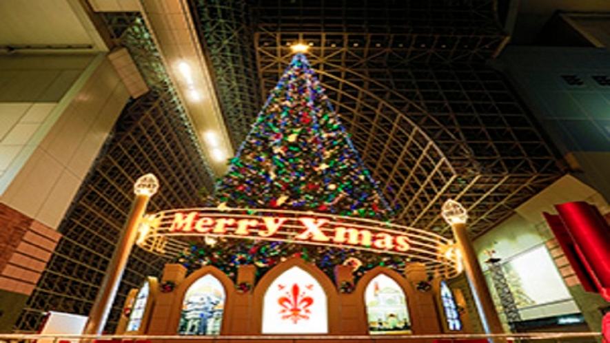 クリスマスプランのイルミネーション
