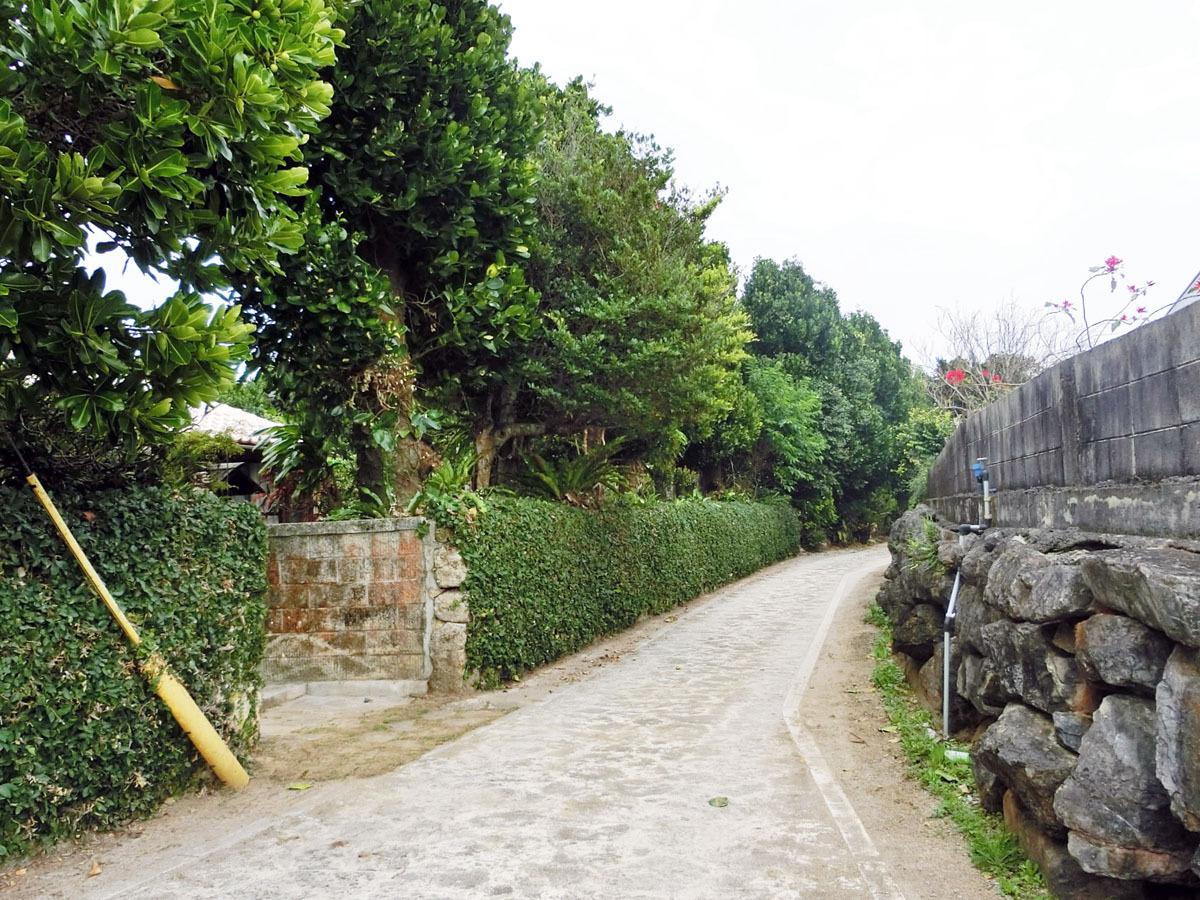 【周辺】今帰仁の散歩道