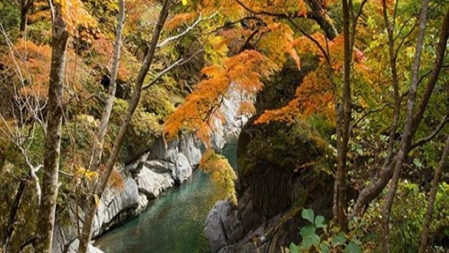 【観光情報】中津峡の紅葉