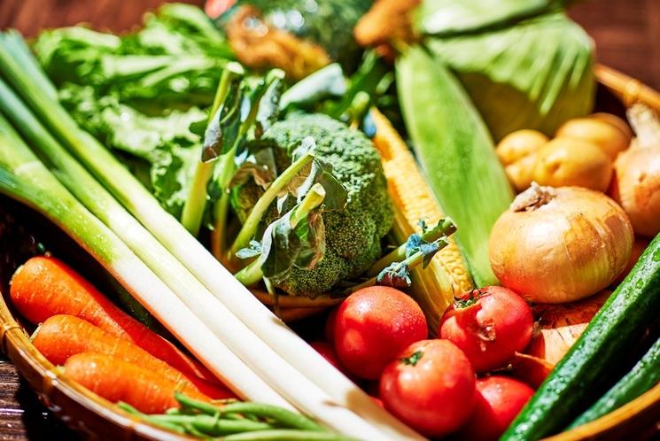 地元の野菜を毎日お届け