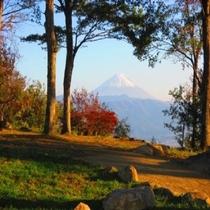 ◆武田の杜からの富士山