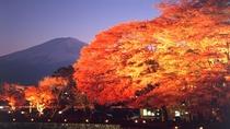 ■河口湖(紅葉)<秋>(写真提供:富士河口湖 観光課)