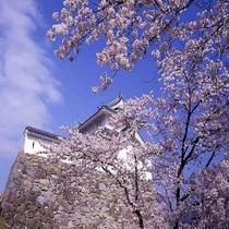 ◆桜 稲荷櫓