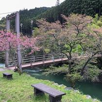 【猿飛千壺峡】春は桜・秋は紅葉がお楽しみいただけます。