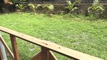 ・専用の庭付。ガーデンBBQもお楽しみいただけます