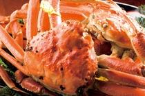 【越前蟹】毎年11月に水揚げ解禁、冬限定の名産です。