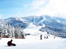 【スキージャム勝山】当ホテルから一番近いスキー場です。