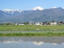 常念岳と水鏡の田圃