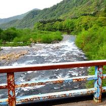 *橋から眺める清津川