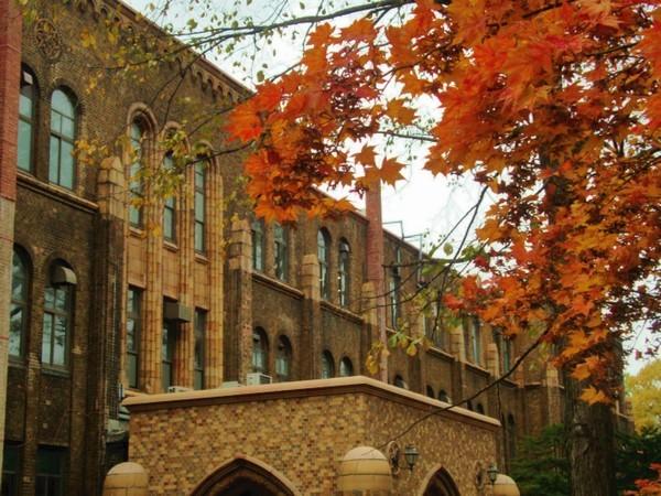 北海道大学・秋