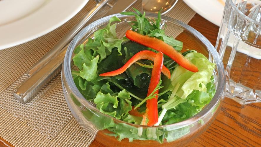 *【夕食一例(大人用)】サラダでバランスのよいお食事をどうぞ