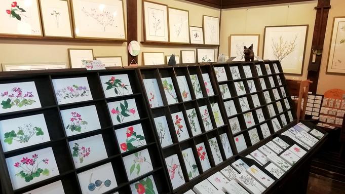 【野の花館◆翌日のチケット付き】季節の花と水彩画を鑑賞◇2食付き