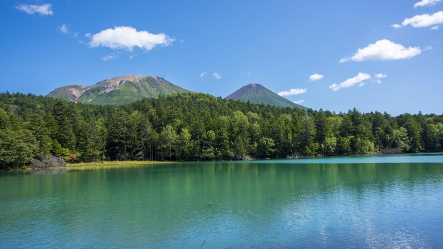 **阿寒湖/当館すぐ目の前!日本で数少ないマリモが生息する湖です。