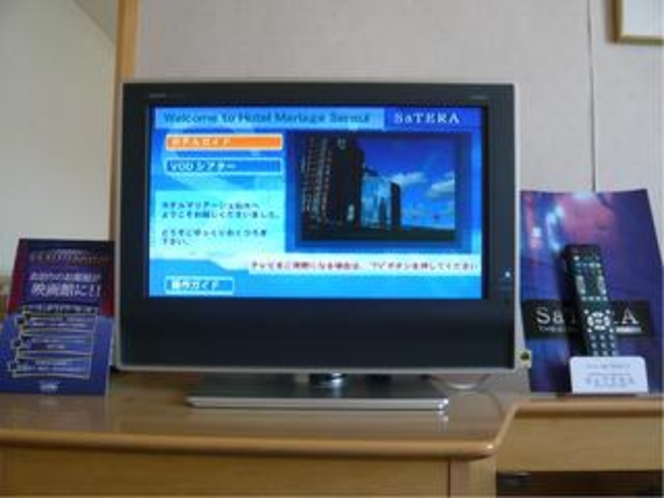 地上デジタルTV