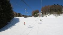 【冬・スキー】木曽福島スキー場。広いバーンで滑ると気持ち良い♪