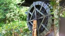 【中庭】中庭には昔使われた水車も