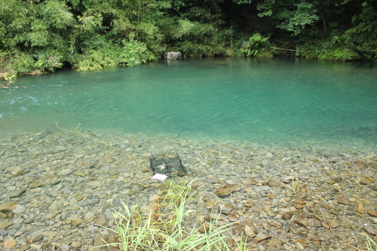 コテージ前の川