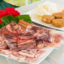 *[BBQ/食材]九州産和牛のカルビ、ロース、切り落とし、国産豚のバラ、ロース、鶏もも♪