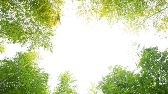 【秋冬旅セール】【スタンダードプラン】豪華バイキング2食付き!貸切風呂・色浴衣無料!