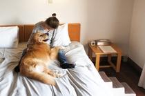 ベッドで一緒に寝る