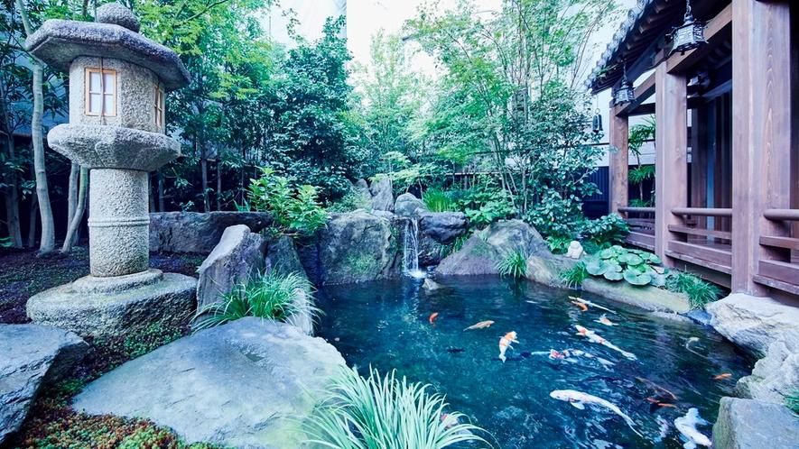 鯉が泳ぐ池