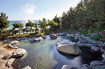 伊豆半島最大級の大野天風呂(月灯りの湯)