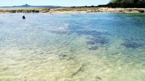 備瀬崎ビーチは熱帯魚の宝庫