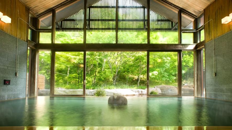 星野温泉 トンボの湯(内湯)