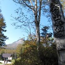 *周辺観光/大雪山黒岳の五合目。