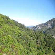 *周辺/大雪山国立公園の雄大な自然は四季折々の景観を楽しむことができます。