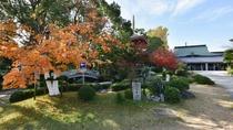 *【庭園】四季折々の景色が楽しめる手入れのされたお庭