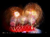 【海上フェニックス】寺泊港まつり 海上花火大会で打ち上げられる花火は圧巻です
