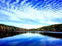 青空広がる白駒の池