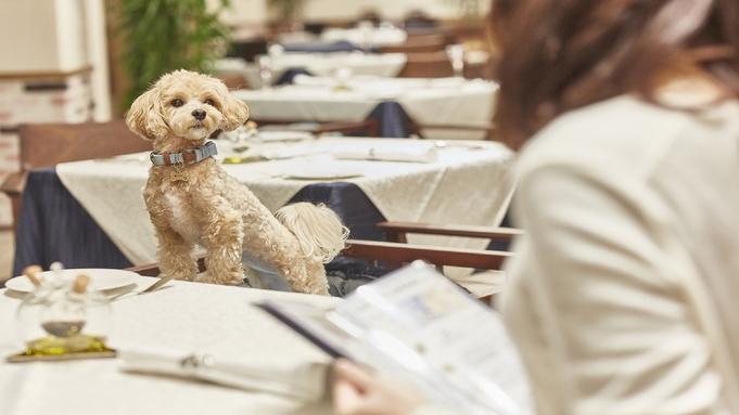 【共立リゾート35棟OPEN記念】★ペット同伴ルーム★愛犬も嬉しいResort&Pet Hotel