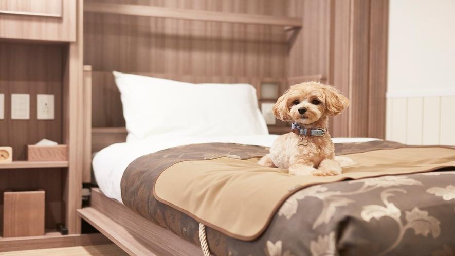 【客室】無料貸出ベッドマット