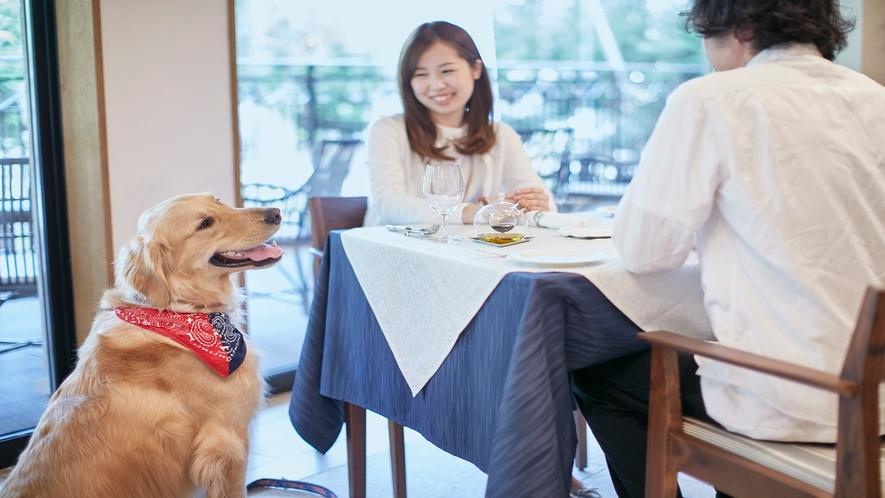 【レストラン】わんちゃん同伴可能