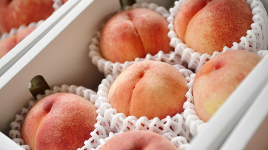 *【産直マルシェ】夏季限定のお楽しみ!契約農家から届く、新鮮で大きな甘い桃を販売しております。