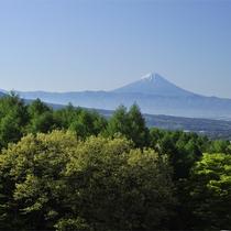 *【当館上空より】富士山や南アルプス、八ヶ岳を遥かに望む、森に囲まれた当館。森がくれる癒しと元気。
