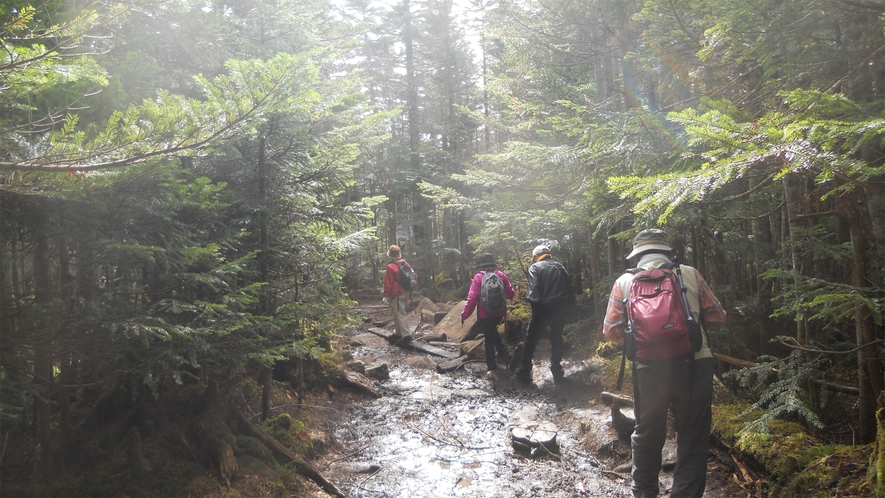 *【周辺観光】山々や川俣川渓谷等自然が豊富な為、ガイドツアーや登山、ハイキングなどが人気です。