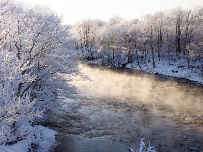 【釧路川】冬になると氷点下の日が続く道東では、美しい樹氷が姿を現します。