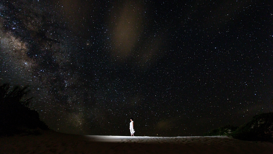 【星空フォトツアー】肉眼では見えづらい星も写真に収め、運が良ければ流れ星も…