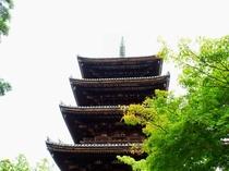仁和寺(ホテルより徒歩・電車・バス約30分)
