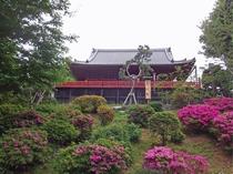 清水観音堂(ホテルより徒歩13分)